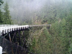 One-way bridge over the Carbon River gulch on SR 165 south of Carbonado