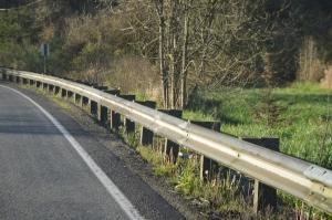 Wet railing at roadside over oxbow marsh, 4-16-15