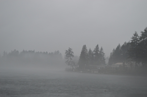 Enchanted Island in rain and fog as the weather warms and the ice begins to melt.
