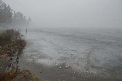 Spanaway Lake ice forming cracks. It is quite dangerous now that the warming has begun.
