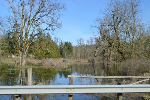 Graham Wa Weather >> Pioneer Valley Oxbow flooding – Pierce Prairie Post