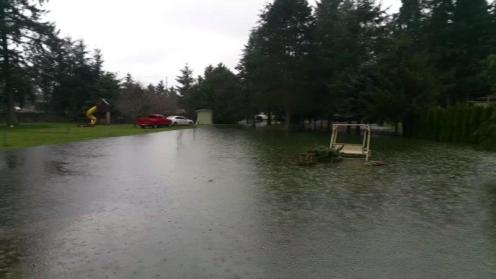 High water in the Pike's front yard 3/18/2017