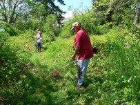 Trail clearing Kapowsin